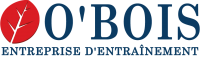 OBOIS INTERNATIONAL logo